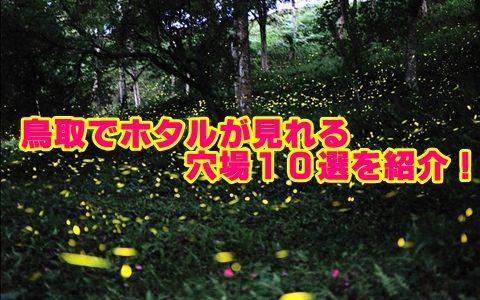 鳥取県のホタルの時期と穴場スポット10選!観賞のポイントも確認!