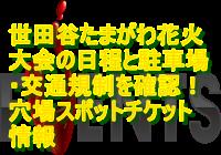 世田谷たまがわ花火大会2019の日程と駐車場・交通規制を確認!穴場スポットチケット情報