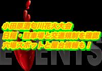 小田原酒匂川花火大会2020日程・駐車場と交通規制を確認!穴場スポットと屋台情報も!